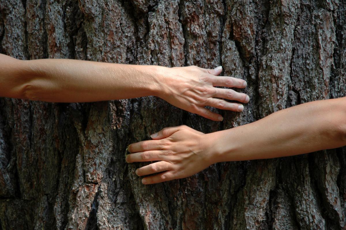 Environmental Clubs in Your School, Office & Neighbourhood