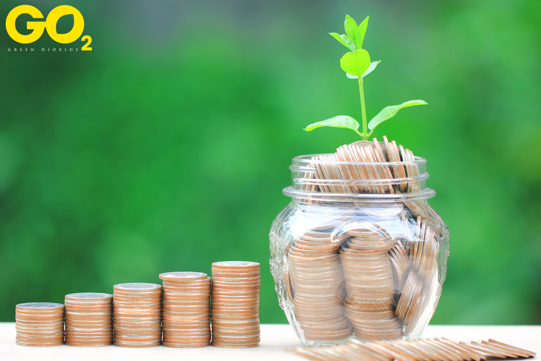 Funding for Environmental Initiatives